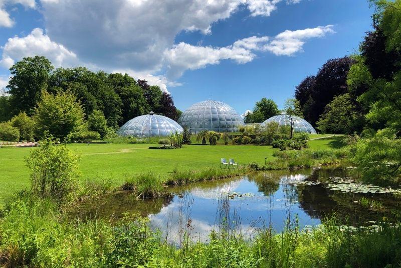 Botanischer Garten Zürich, Schweiz