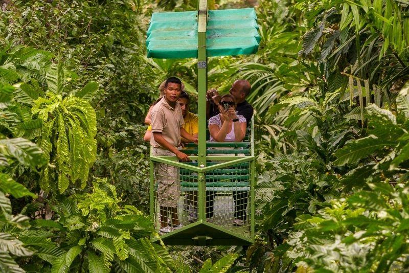 aerial tram in Gamboa Rainforest, Panama City