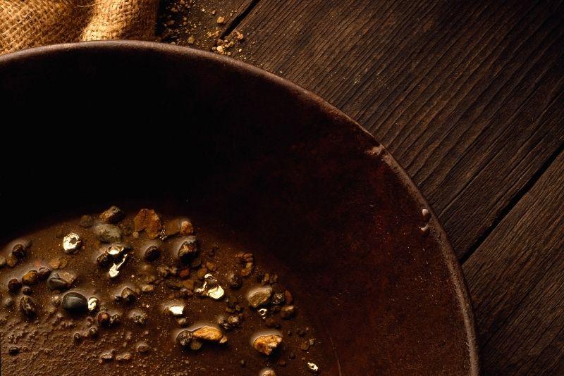 gold panning tour in Juneau