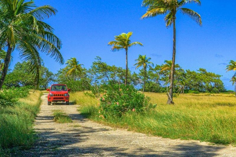 jeep tours in Aruba