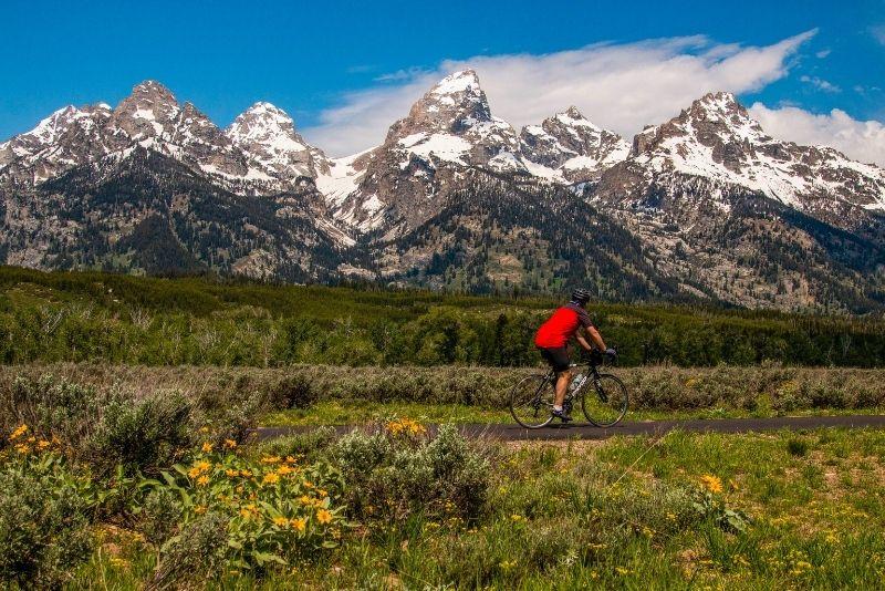 mountain bike tours in Jackson Hole