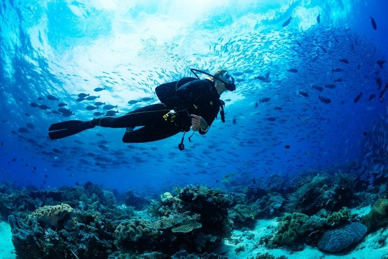 scuba diving in St Thomas