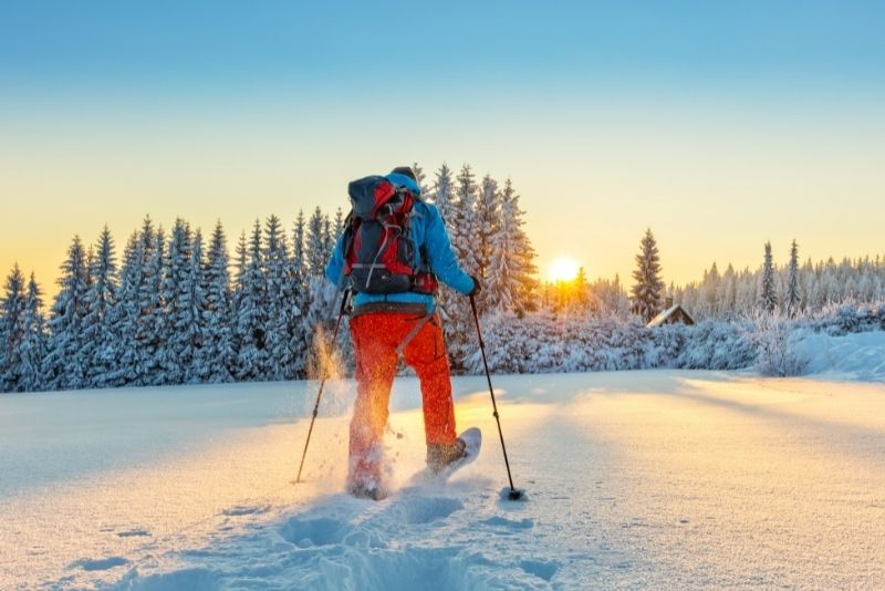 snowshoeing in Jackson Hole