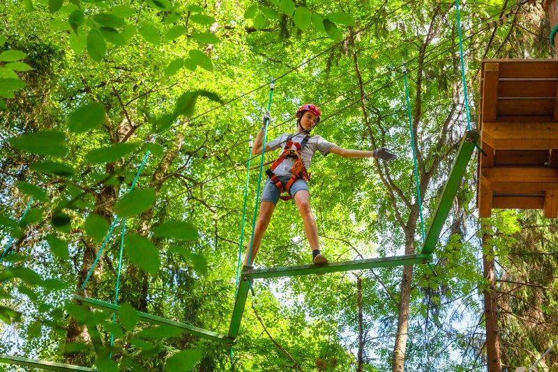 Cimes Aventures treetop park