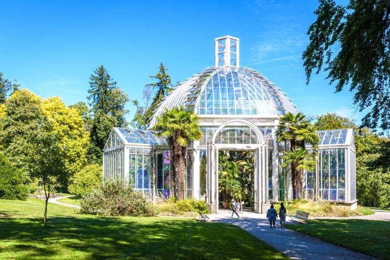 Conservatory and Botanical Garden of the City of Geneva