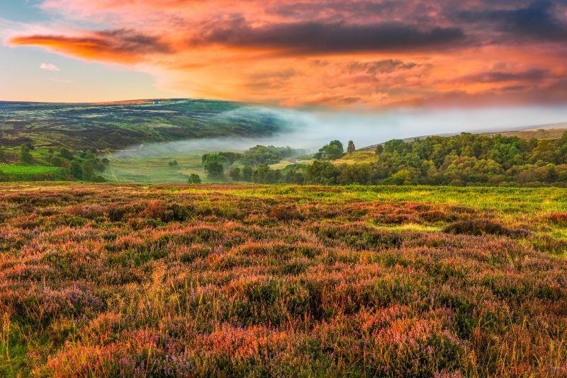 North Yorkshire Moors, York