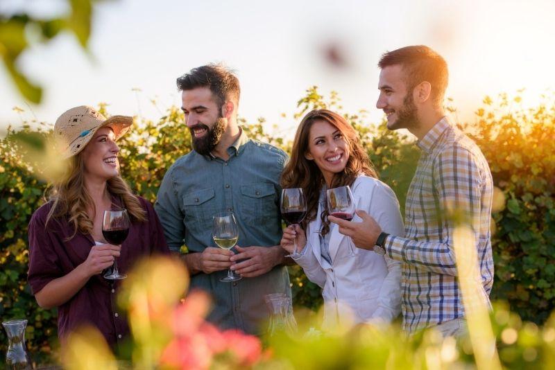 Rhone Valley wine tour