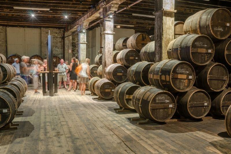 cellar of Otard winery of Cognac town