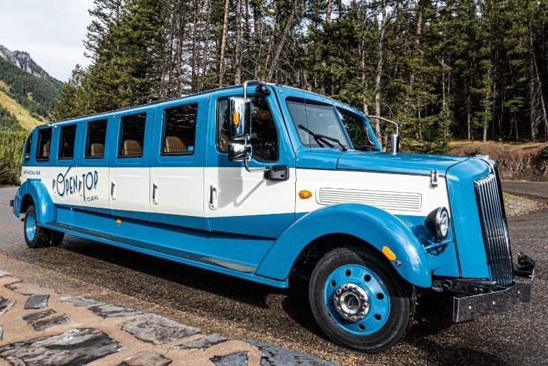 hop-on hop-off bus tours in Banff