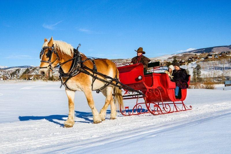 horse-drawn sleigh in Banff