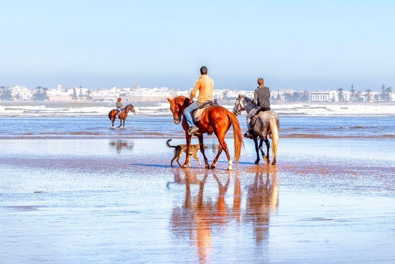 horse riding trip from Marrakech